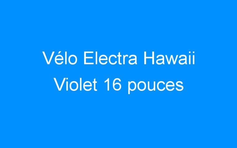 Vélo Electra Hawaii Violet 16 pouces