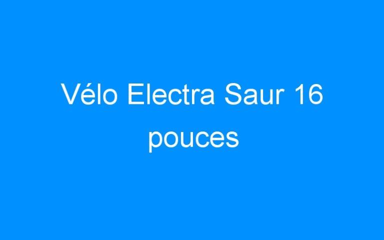 Vélo Electra Saur 16 pouces