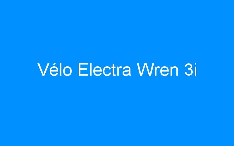 Vélo Electra Wren 3i