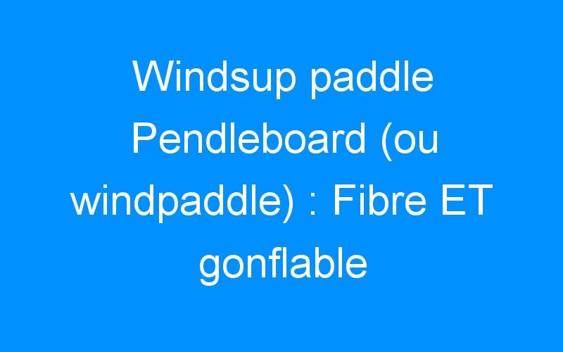 Windsup paddle Pendleboard (ou windpaddle) : Fibre ET gonflable